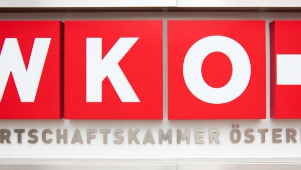 Wiener Wirtschaftskammer fordert Finanzierung durch Öffentlichkeit