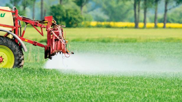 Pestizide und Verbauung: Die Hauptgründe für das Tiersterben sind klar, in der Politik fehlt der Wille, etwas zu ändern.