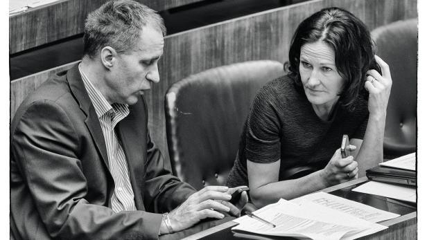 Parlamentstandem: Als geschäftsführenden Abgeordneter hält Dieter Brosz seiner Parteichefin Eva Glawischnig im Klub den Rücken frei.