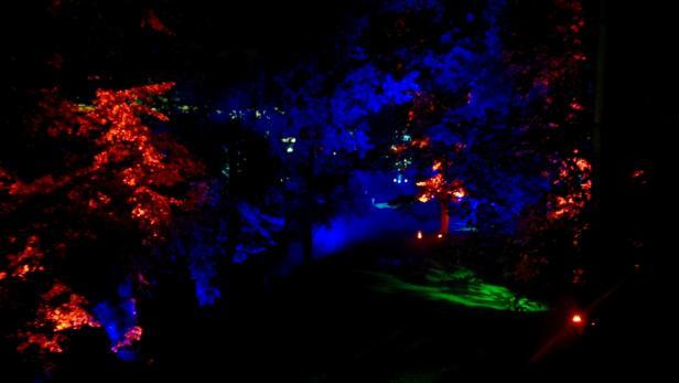 """Die Installation """"Magical Garden"""" von Kari Kola."""