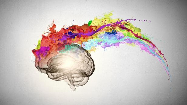 Neuroforscher: Die bizarren Eigenheiten des Gehirns