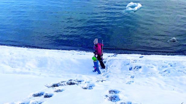 Eisbärspuren im Schnee